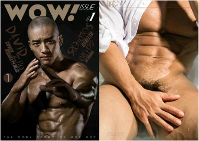 Wow Issue 1   Part 1-2 [ Ebook+Video ]